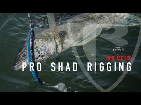 Fox Rage Pro Shad Natural Classic 2 Shads 18cm | UK Delivery