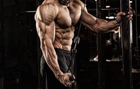 10 Best Tricep Exercises & Workouts for Men   Man of Many