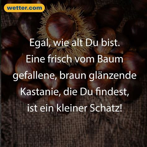 Weather Forecast and Forecast October 2019 | Herbst spruch